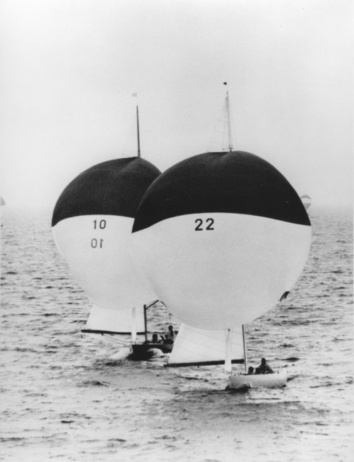 Nisse L-22 and Dudde L-10