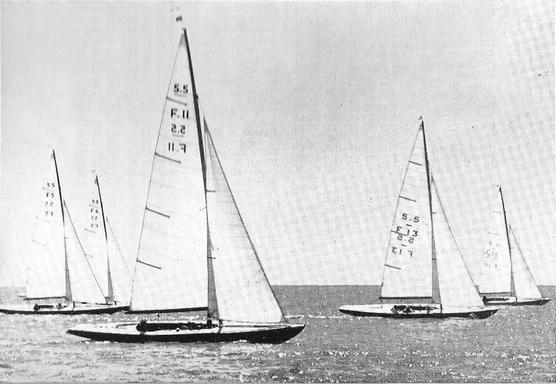 F 11 - Arion