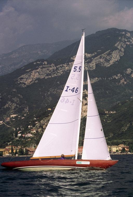 Violetta VII