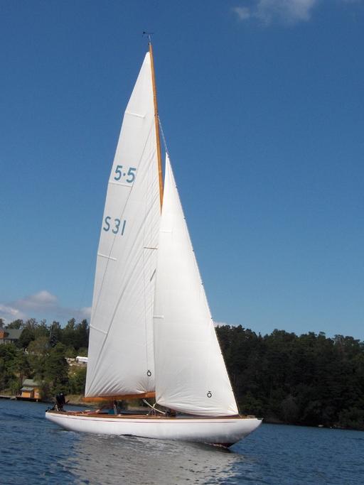 5.5 SWE 31